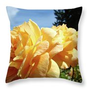 Rose Garden Yellow Peach Orange Roses Flowers 3 Botanical Art Baslee Troutman Throw Pillow