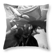 Rose Gray Tones Throw Pillow