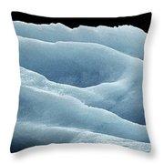 Rose Iceberg Throw Pillow