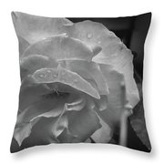 Rose In Black And White Throw Pillow by Kelly Hazel