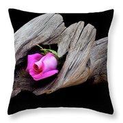 Rose In Driftwood 2 Throw Pillow