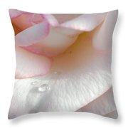 Rose In The Morning Sun Throw Pillow