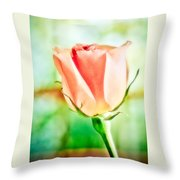 Rose In Window Throw Pillow