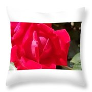 Rose Is As Rose Does Throw Pillow