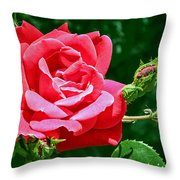 Rose Is Its Name Throw Pillow