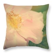 Rose Of Mine Throw Pillow