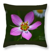 Rose Of Plymouth Throw Pillow