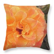 Rose Of Seville Throw Pillow