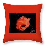 Rose Of Sharon Orange On Black Throw Pillow