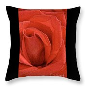 Rose-paintdaubs-2 Throw Pillow