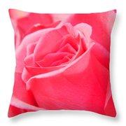 Rose Petals - 1 Throw Pillow