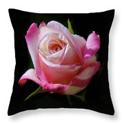 Rose Photo Throw Pillow