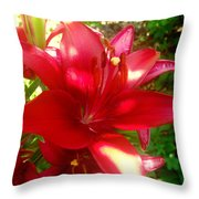 Rose Pink Lily Throw Pillow