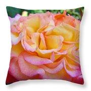 Rose Pink Yellow Rose Flower 2 Rose Garden Giclee Prints Baslee Troutman Throw Pillow