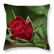 Rose Portrait  Throw Pillow