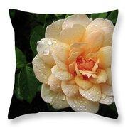 Rose Rain Throw Pillow