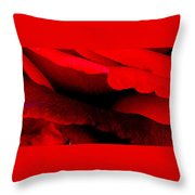 Rose Red Throw Pillow by Dana Patterson