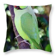 Rose-ringed Parakeet Throw Pillow