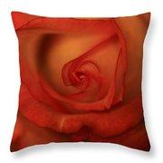 Rose Softness Throw Pillow