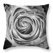 Rose Spiral Black And White Throw Pillow by James BO  Insogna