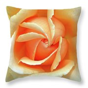 Rose Unfolding Throw Pillow