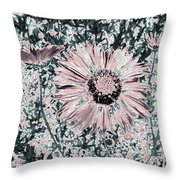Rose Wine Daisies Throw Pillow