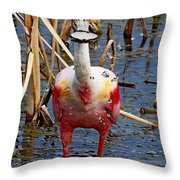 Roseate Spoonbill And Water Drops Throw Pillow
