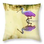 Roseate Spoonbill At Sunrise Throw Pillow