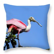 Roseate Spoonbill Throw Pillow