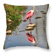 Roseate Spoonbill Reflections Throw Pillow