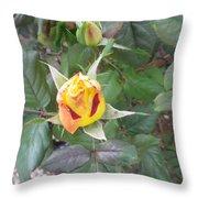 Rosebud #2 Throw Pillow