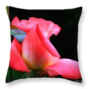Rosebud And Dewdrops  Throw Pillow