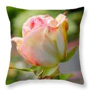 Rosebud Pale Pink Throw Pillow