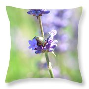 Rosemary And Lavender Throw Pillow