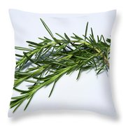 Rosemary Isolated On White Throw Pillow