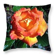 Roses 1 Throw Pillow