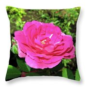 Roses 10 Throw Pillow