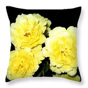 Roses 11 Throw Pillow
