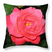 Roses 12 Throw Pillow