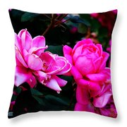 Roses 2 Throw Pillow