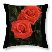 Roses-5840 Throw Pillow