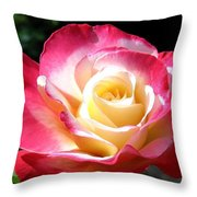 Roses 7 Throw Pillow