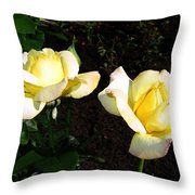 Roses 8 Throw Pillow