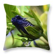 Rosebuds And Raindrops Throw Pillow