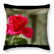 Red Rose Wall Art Print Throw Pillow