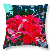 Roses At Mont Alto Throw Pillow