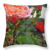 Roses Everywhere Throw Pillow