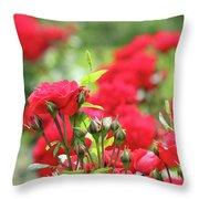 Roses Garden Spring Scene Throw Pillow