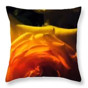 Roses In Moonlight 11 Throw Pillow