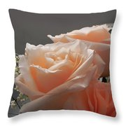 Roses Light Throw Pillow